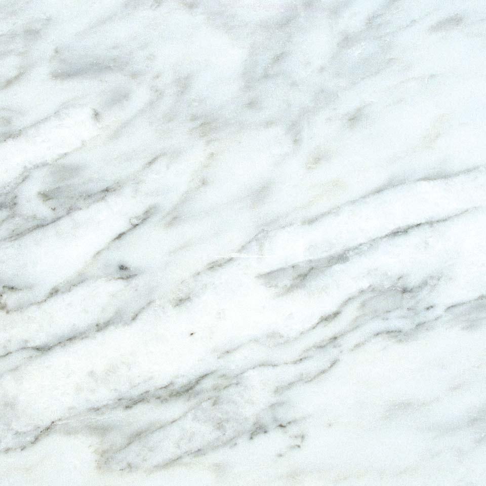 Calacatta Latte Marble